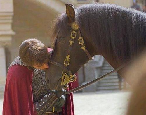 Mr Camelot...FlawFree and Horsey