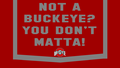 NOT A BUCKEYE, tu DON'T MATTA