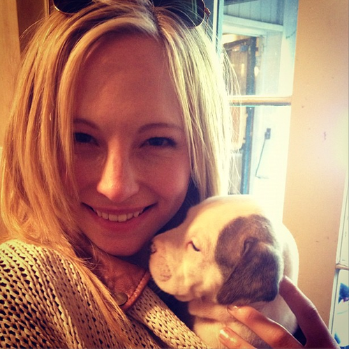 New Instagram ছবি - Candice with a puppy!
