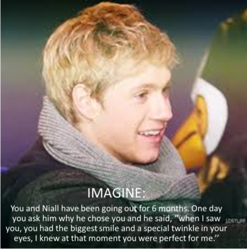 Niall Horan Imagine <33