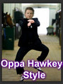 Oppa Hawkeye Style! - hawkeye-and-black-widow fan art