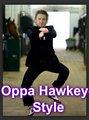 Oppa Hawkeye Style!