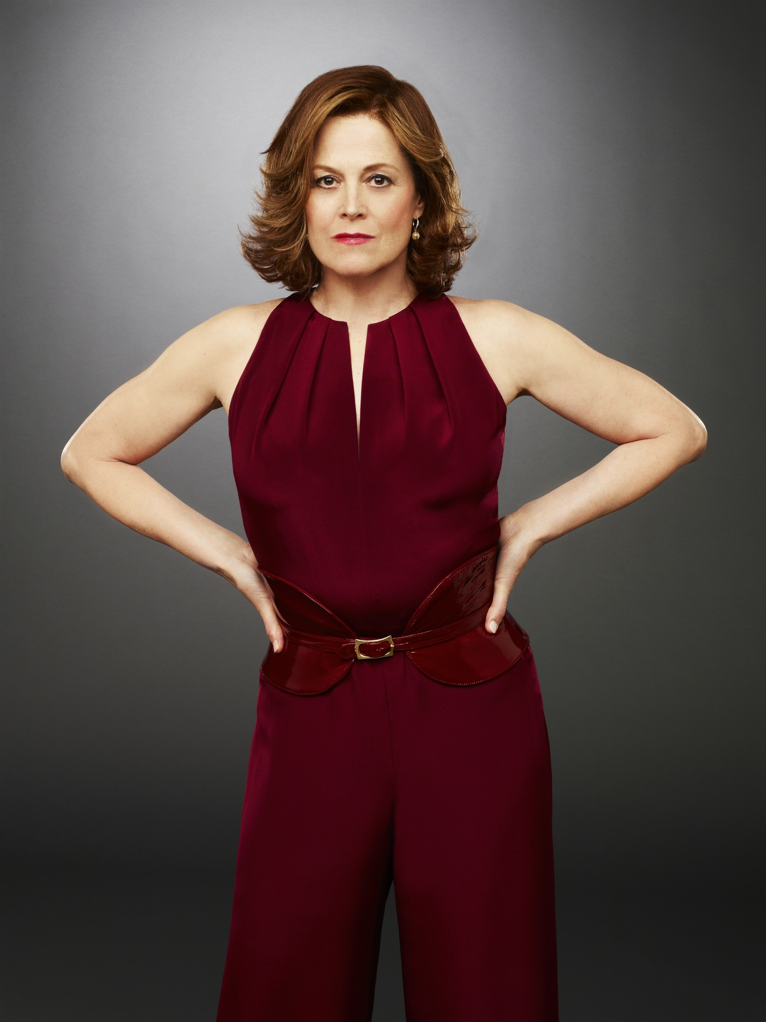 Political Animals - Sigourney Weaver Photo (33764478) - Fanpop