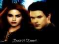Rosalie & Emmett - twilight-couples wallpaper