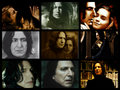 Severus and Hermione - hermione-and-severus fan art