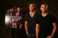 Supernatural: The animatie