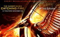 the-hunger-games - THG Catching Fire Wallpaper wallpaper