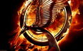 THG Catching Fire Wallpaper