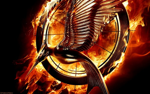 The Hunger Games wallpaper entitled THG Catching Fire Wallpaper