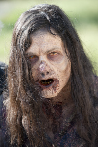 The Walking Dead achtergrond entitled The Walking Dead - 3x12 - Clear