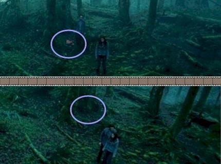 Twilight // Movie