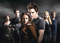 Twilight // Movie - twilight-movie photo