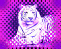 White Tiger - white-tiger fan art