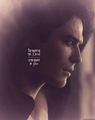 beauty of the dark - damon-salvatore fan art