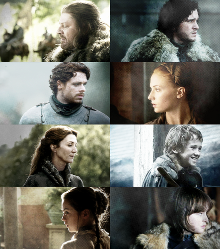 House Stark + Profiles