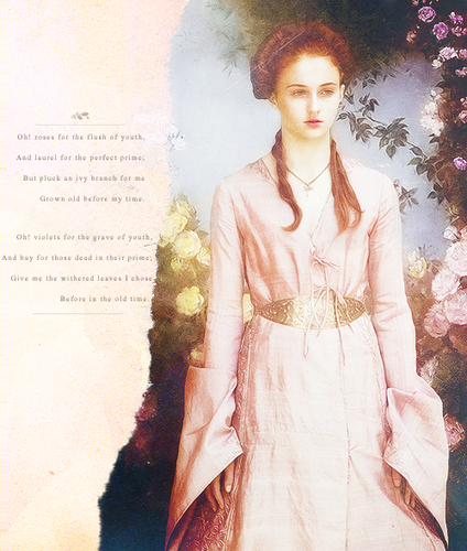 Game of Thrones wallpaper possibly containing a dress titled Sansa Stark