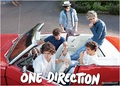 one direction, 2013 - one-direction photo