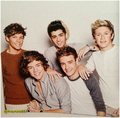 one direction,Tour Book, 2013