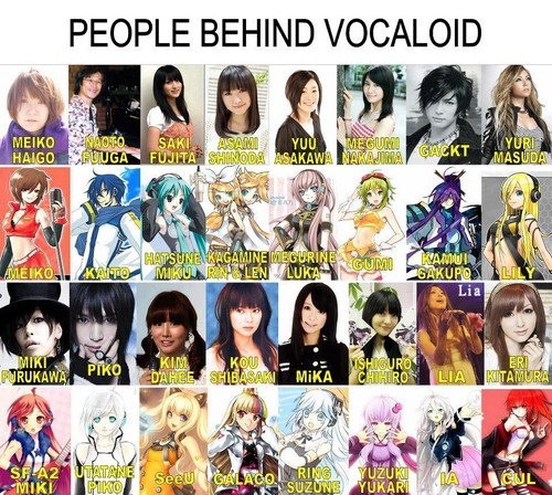 Vocaloids wallpaper containing anime titled people behind vocaloid