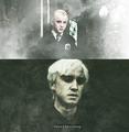 Draco Malfoy - draco-malfoy fan art