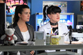 10x18 Seek - Promotional Picture - ncis photo