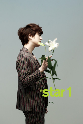 Super Junior wallpaper probably with a bouquet, a kimono, and a japanese albicocca called 130305 @Star1 Official Facebook Update with Super Junior K.R.Y