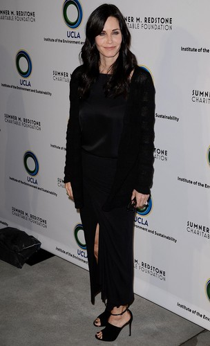 courtney cox wallpaper containing a well dressed person and a business suit titled 2nd Annual an Evening of Environmental Excellence Gala 2013