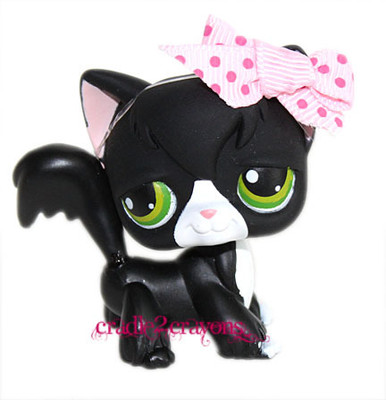 Angora Cat #55 RARE! - Littlest Pet Shop Photo (33823170) - Fanpop