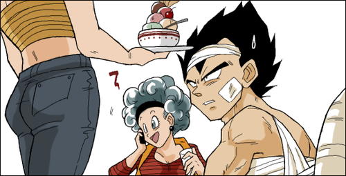 Bulma Vegeta Mrs.Brief