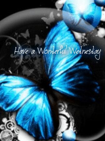 con bướm, bướm blue