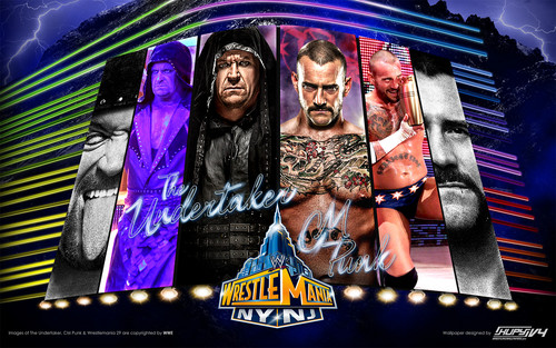 CM Punk vs The Undertaker - Wrestlemania 29