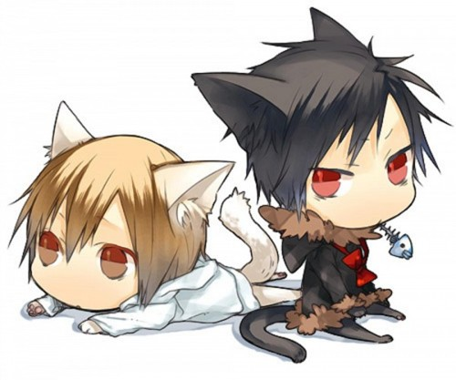 চিবি Heiwajima Shizuo and Orihara Izaya in Cat Form