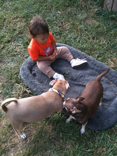 Coco and Grady share their kegemaran outside toys with their new friend.
