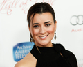 Cote at the 22nd Hall of Fame Induction Gala 3/11/13 - cote-de-pablo photo