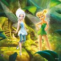 Disney Fairies - disney-fairies photo