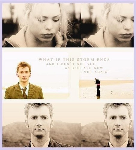 The Doctor and Rose wallpaper probably with a portrait called Doctor & Rose