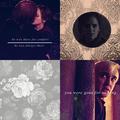 Draco x Hermione