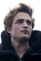 Edward Cullen - edward-cullen photo