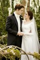 Edward and Bella - the-twilight-saga-vampires-wolves photo