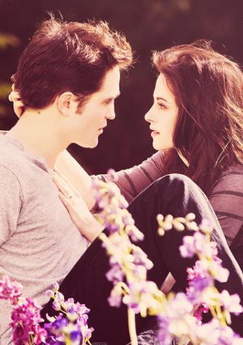 Edward und Bella