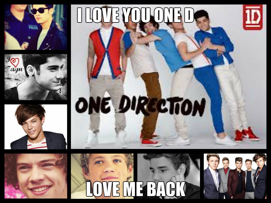 the love of one direction They are honestly mad for love or whatever chemistry the band is brewing in their  bodies the documentary film crazy about one direction.