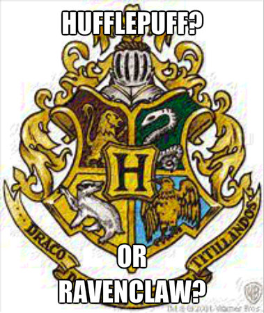 Its all abut Griffindor and Slytherin.