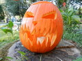 Jack O Lantern - halloween photo