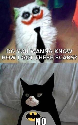 Joker vs. Batman ~ Funny Gatti