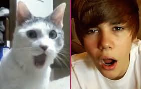 Justin and Cat