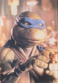 Leonardo - ninja-turtles photo