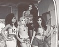 Little Mix... - little-mix wallpaper