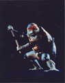 Michaelangelo - ninja-turtles photo
