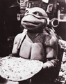 Pizza time - ninja-turtles photo