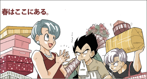 Shopping Bulma Trunks Vegeta